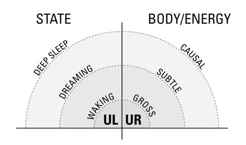 States-Body-Graph