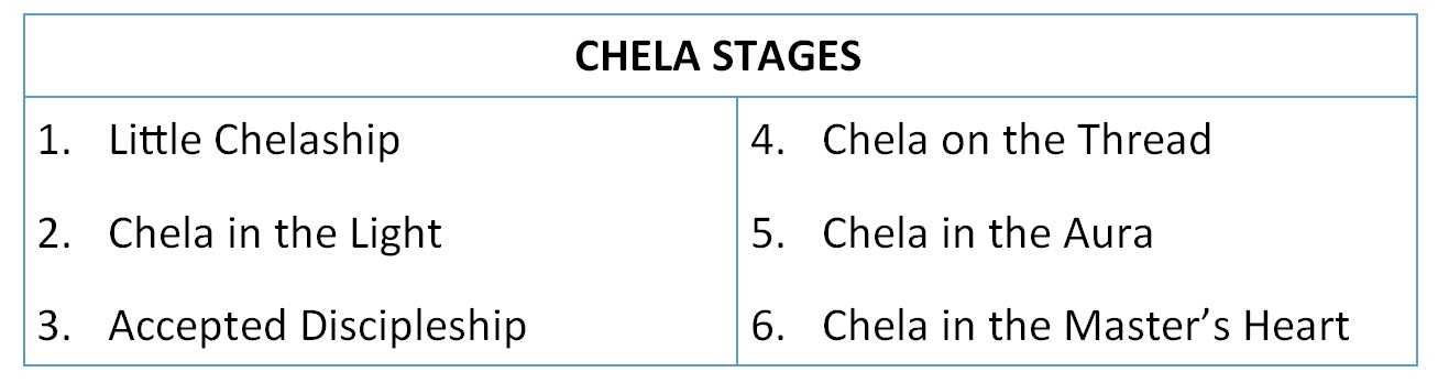 Chela Stages