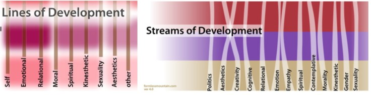 Integral Lines and Streams